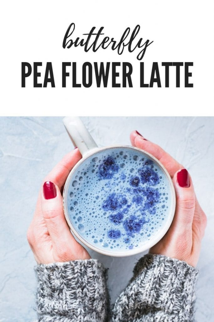 butterfly pea flower latte with rose petals in mug with hands holding