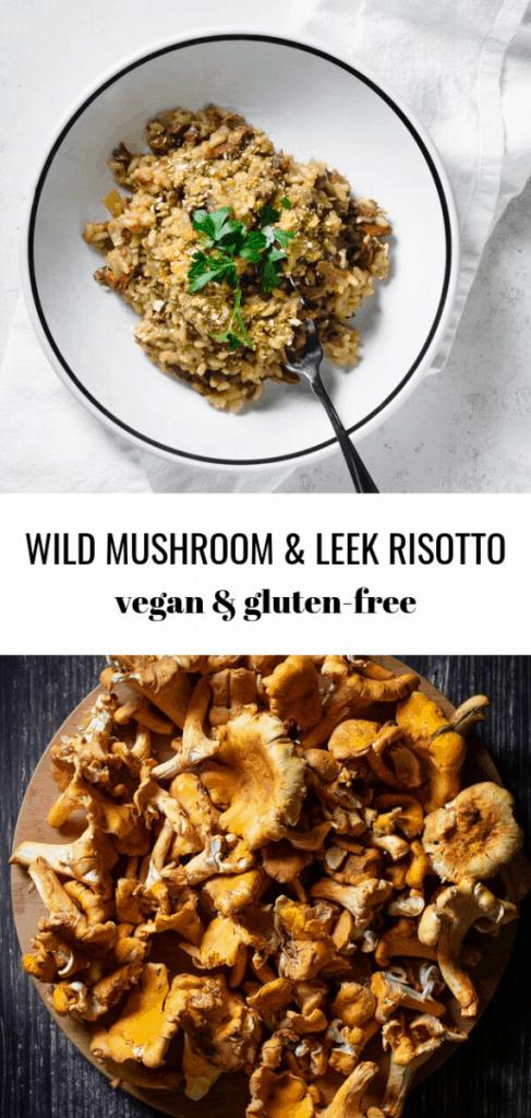 Wild Mushroom and Leek Risotto